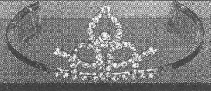 h-tiara-3320-zoom
